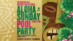 ALOHA PARTY 2019 BANNER WEBSITE